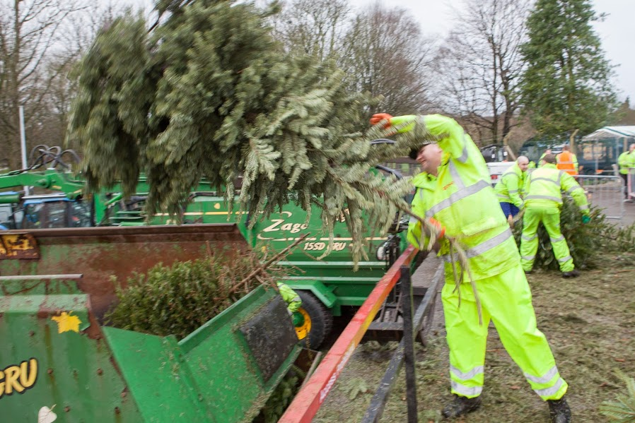 Donations for Postponed Christmas Tree Collection