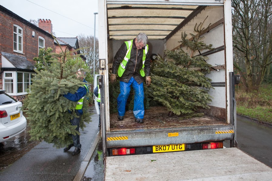 Christmas Tree Collection Postponed