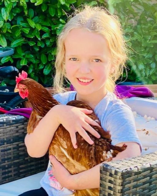 Local Hens Eggschange their Produce for Donations