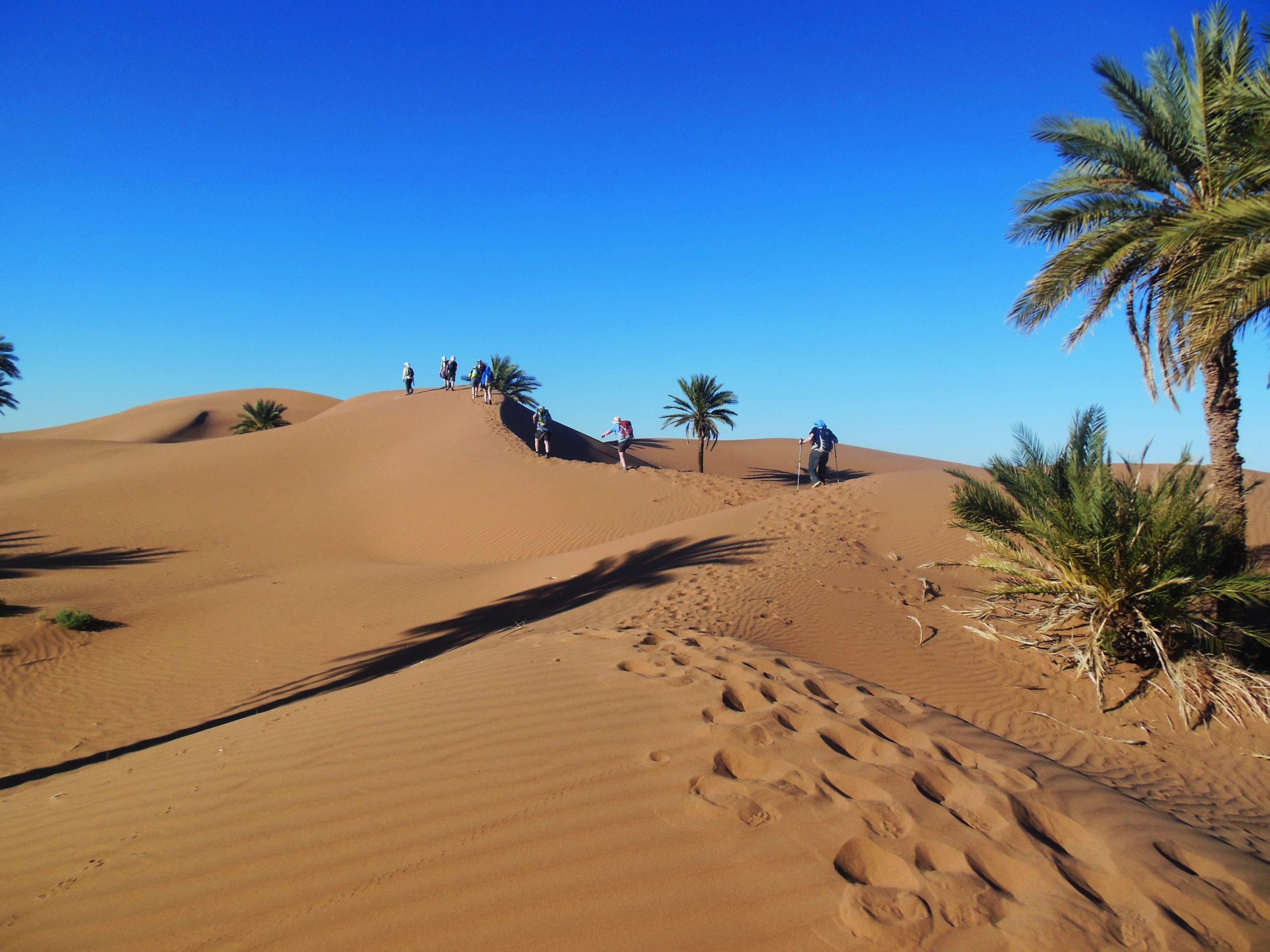 Sahara Trek Postponed